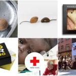 Mandelgave 2017 – 6 idéer til mandelgaven 2017