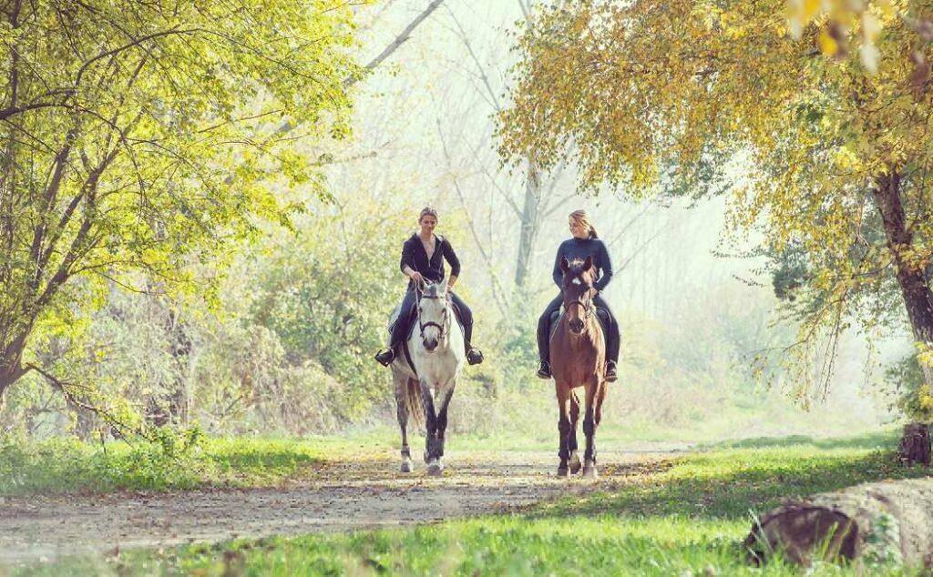 ridning i dyrehaven oplevelsesgave til børn gave til hestepige oplevelse for børn københavn